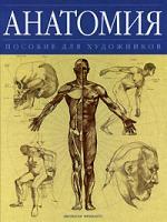 Анатомия Пособие для художников