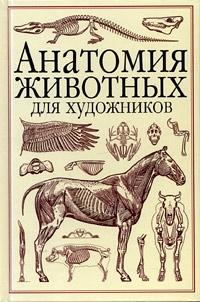Анатомия животных для художников